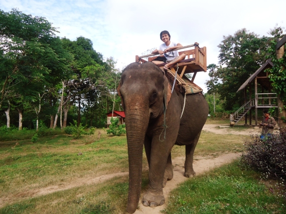 elephant ride in Laos