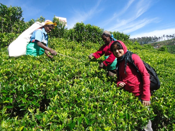 with tea pickers in Sri Lanka